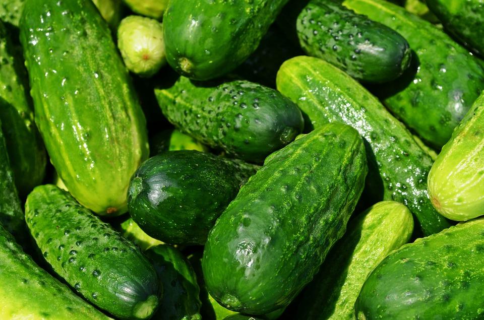 cucumbers-849269_960_720
