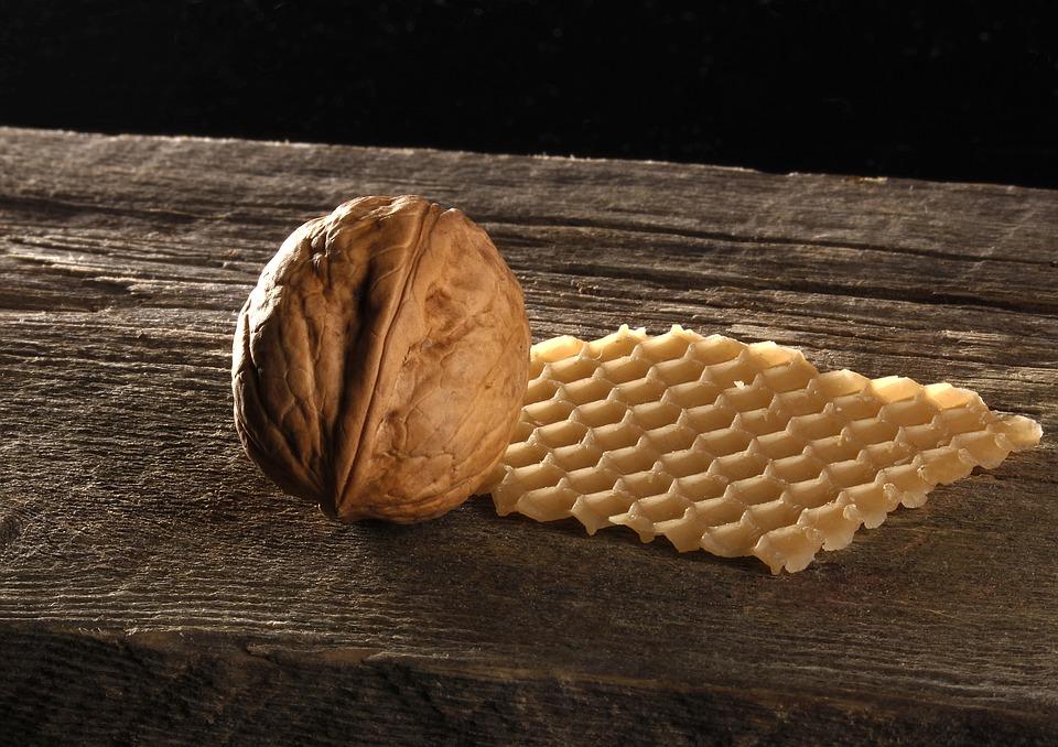 walnut-480120_960_720