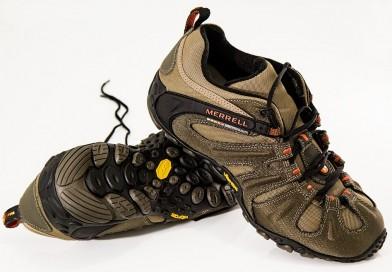 Apie bėgimo žalą ir cholesterolio naudą
