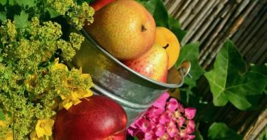 Neigiamas kalorijų skaičius – ar tokie produktai egzistuoja